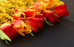 Idérik ordning av tulpan på svart bakgrund Royaltyfri Foto