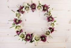 Idérik ordning för blommakrans på ljust trä Fotografering för Bildbyråer