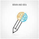 Idérik rätt och vänstert hjärn- och blyertspennasymbol Arkivbilder