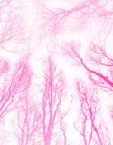 Idérik rosa ovanlig abstrakt modell vektor illustrationer