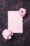 Idérik sammansättning med den tomma och härliga ranunculusblomman för rosa färgpapper på den svarta bästa sikten för tabell för a arkivfoto