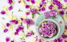 Idérik sammansättning med naturliga blommor arkivbild