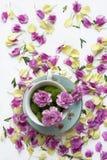Idérik sammansättning med naturliga blommor arkivfoto