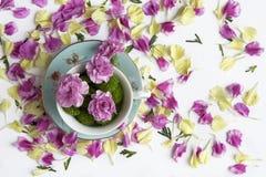 Idérik sammansättning med naturliga blommor royaltyfria foton