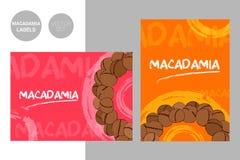 Idérika etiketter för macadamiamuttrar i röda och orange färger med för typografi- och borsteslaglängd för hand utdragna bestånds stock illustrationer