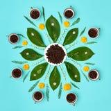 Idérika kaffebönor med blommamandalapastell färgade konstbakgrund Aktivering för kaffe för bra morgon blom- Arkivfoto