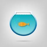 Idérikt akvarium med en liten guldfisk Fotografering för Bildbyråer