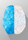 Idérikt begrepp för mänsklig hjärna royaltyfri illustrationer