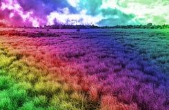Idérikt dynamiskt mångfärgat abstrakt bakgrundslandskap med fältet och himmel Arkivbilder