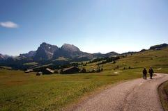 Idílico vie no cume nas dolomites/cume de siusi/Val Gardena/para o sul Tirol Fotografia de Stock Royalty Free