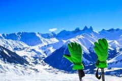 Idílio do inverno Imagem de Stock