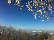 Idílio do inverno Foto de Stock Royalty Free