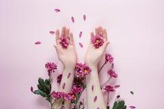 id?rik sammans?ttning Härlig kvinnlig hand med purpureblommor på rosa bakgrund Sk?nhetsmedel f?r handanti-skrynkla arkivfoton