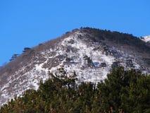 Ida bergen royalty-vrije stock afbeeldingen