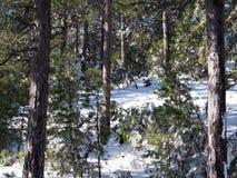 Ida mountains Royalty Free Stock Photos