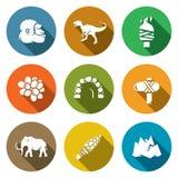 Idade da Pedra e alvorecer dos ícones dos dinossauros ajustados Imagens de Stock Royalty Free