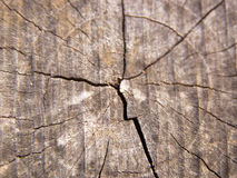 Idade de madeira Imagens de Stock