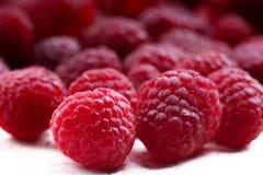 idaeus莓红色悬钩子属植物甜点 免版税库存图片