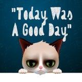 Idagen var en bra dag, kort med den gulliga vresiga katten stock illustrationer
