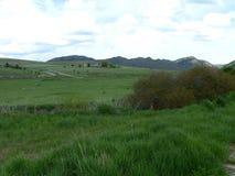 Idaho bergdalgång Arkivfoto