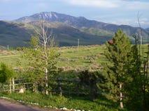 Idaho berghem Royaltyfria Bilder