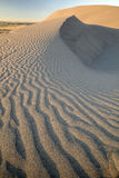 Idaho desert sand dune with ripples Royalty Free Stock Photos