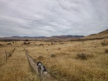Idaho landscape. Landscape of boise idaho foothills royalty free stock photo