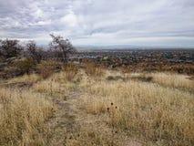Idaho-Landschaft Lizenzfreie Stockbilder