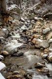 Idaho mountain strean in winter Royalty Free Stock Image
