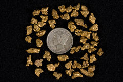 Idaho Placer Gold Nuggets Royalty Free Stock Photo