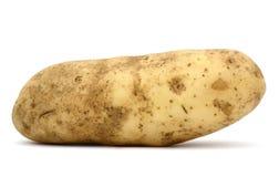 Idaho potatis royaltyfri bild