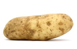 Idaho potato Royalty Free Stock Image