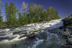 Idaho river with white water and rapids Stock Photography