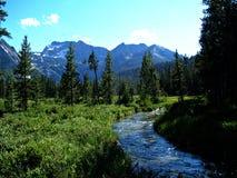 Idaho Sawtooth góry Fotografia Royalty Free