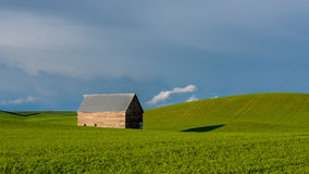 Idaho spring farm with a barn in a green field Royalty Free Stock Photo