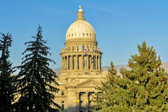 Idaho state capital building and pine trees Stock Images