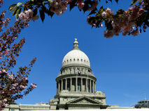 Idaho State Capitol in Springtime Royalty Free Stock Photo