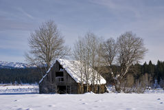 Idaho Winter Cabin Stock Photo