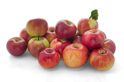 Idared apples Royalty Free Stock Photo
