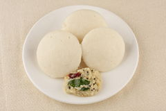 IDDLI. South indian brakefast,IDDLI with coconut chutney Royalty Free Stock Image