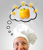 Idée de cuisinier Image stock