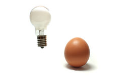 Idea is born from the brown egg #3 Royalty Free Stock Image