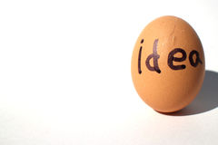 Idea is born from the egg #2 Royalty Free Stock Photo