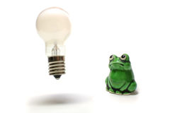 Idea is born from the thinking frog #2 Royalty Free Stock Image