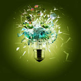 Idea and bulb Royalty Free Stock Photos