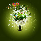 Idea and bulb Stock Photo