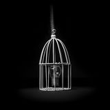 Idea in the cage Stock Image