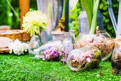 Idea casera de la decoración, una escena del jardín del terrario en una botella clara Foto de archivo