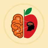 Idea concept illustration with fruit and brain Stock Photography