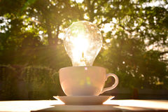 idea concept with light bulbs in coffee cup on nature background Stock Photo